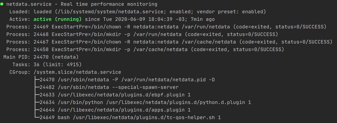 Netdata service running