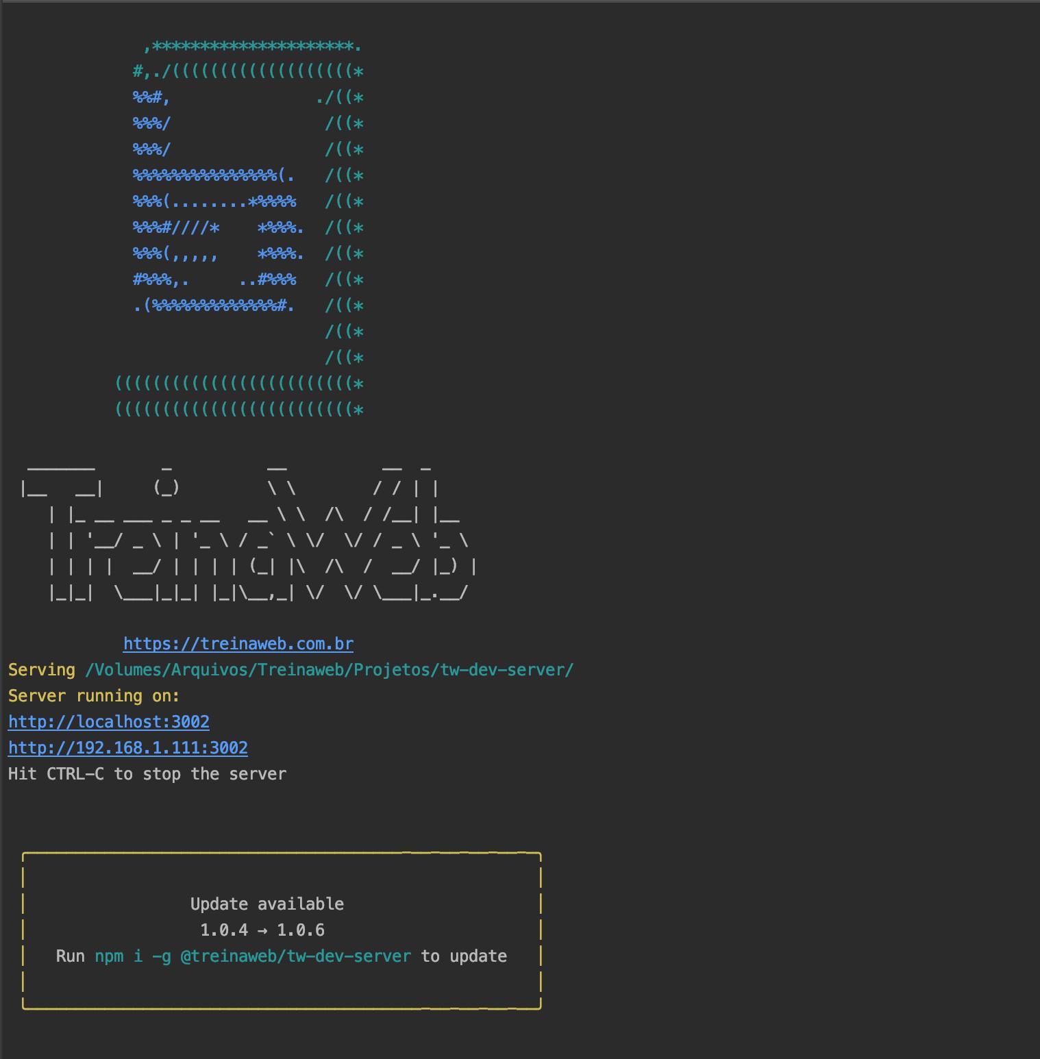 Tw Dev Server - Terminal